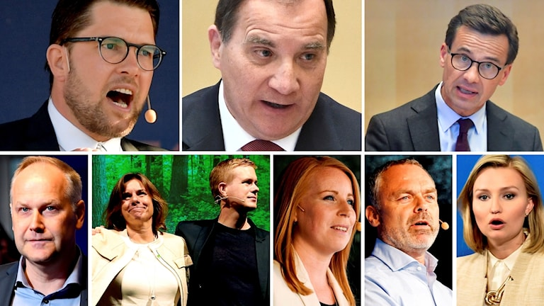 Swedish party leaders
