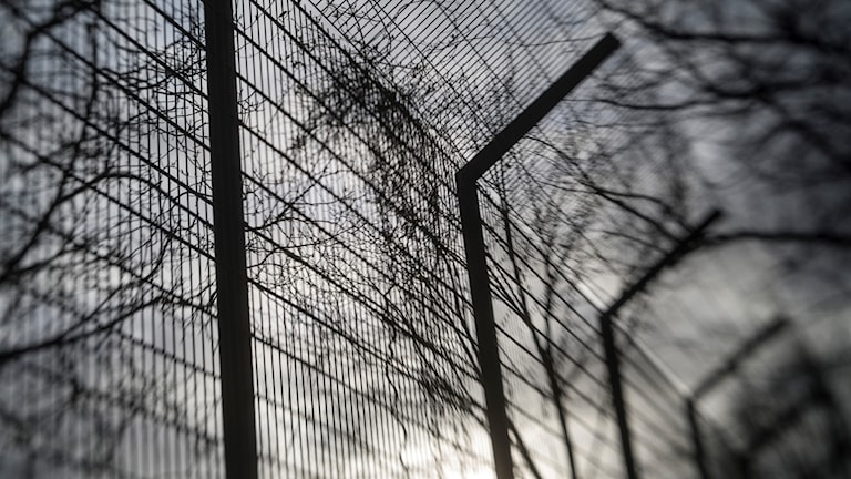 Very high (prison) fence