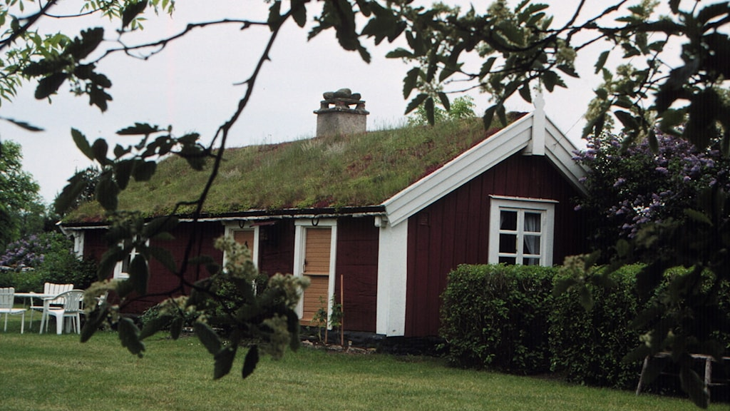 Small red cottage with white around windows. (Archive picture)