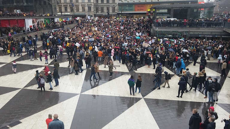 Students gather at Sergels Torg for the school strike demonstration.