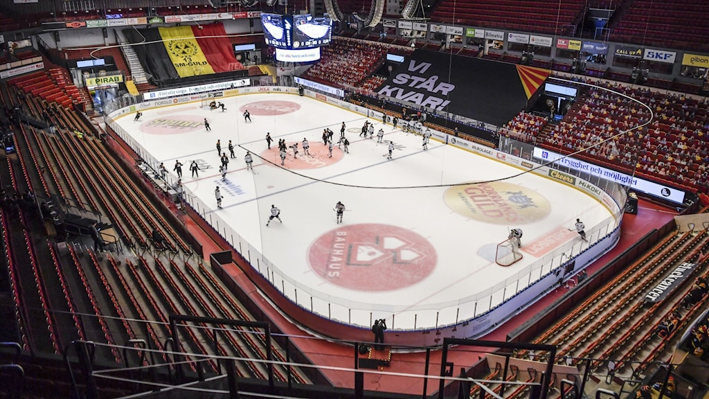 Overview of an ice-hockey rink.
