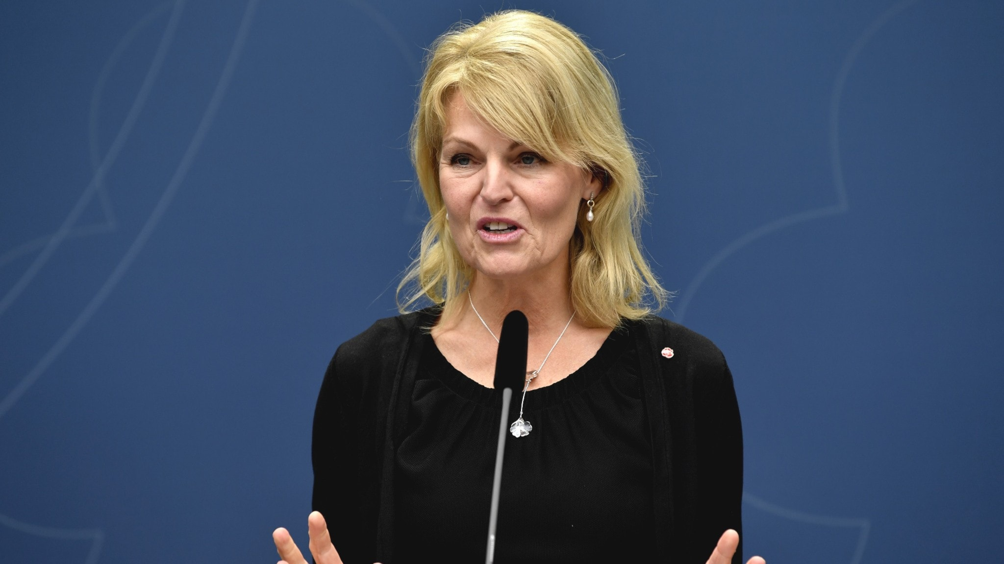 Sweden gathers trade ministers in free-trade push - Radio Sweden