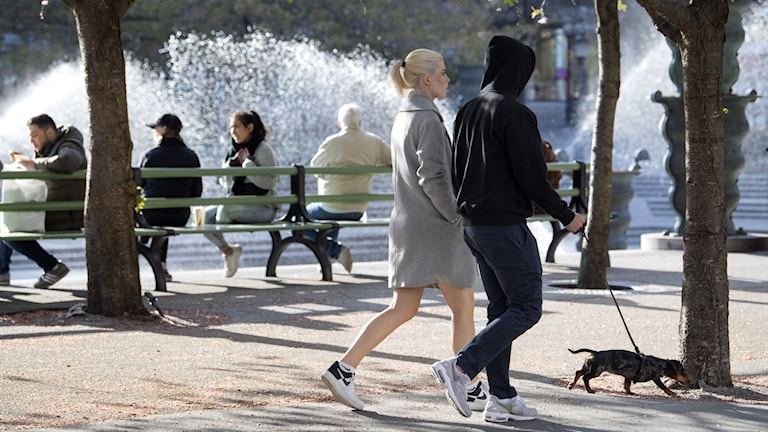 A couple walking their dog in the Kungsträdgården park in central Stockholm. Four people are sitting on a park bench behind them, facing a fountain.
