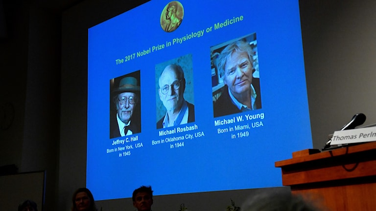 The three laureates are from America.