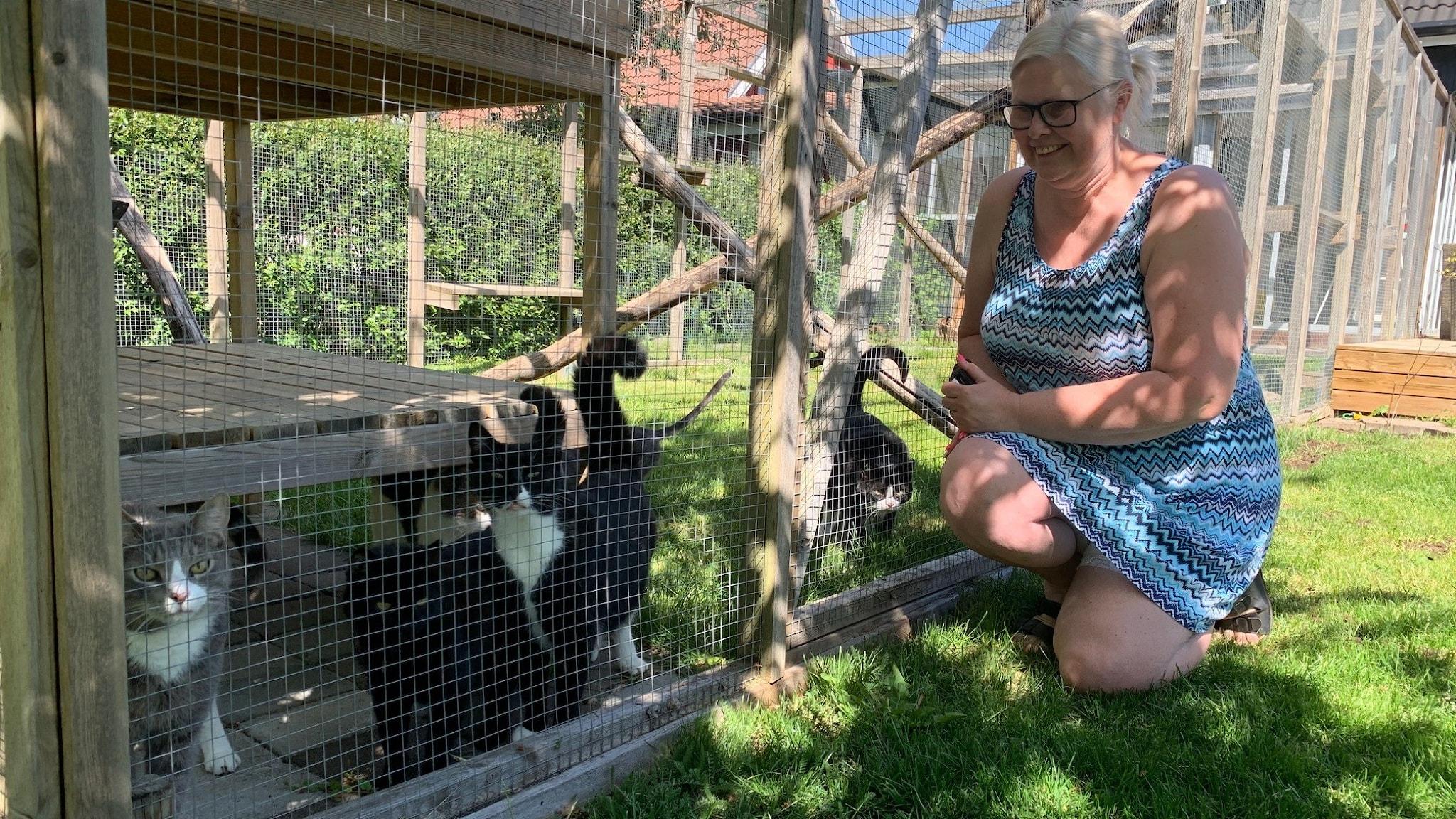 Jennie Johansson, från katthemmet Växjös hemslösa katter, sitter bredvid en stor bur med flera tamkatter.