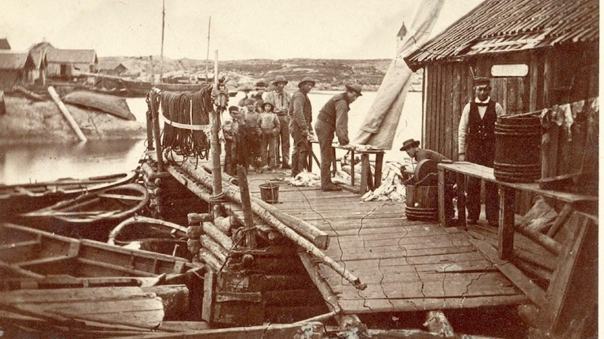 Fiskare på Klädesholmen Tjörn, 1862, inte långt från platsen där bröderna hittades sju år tidigare.