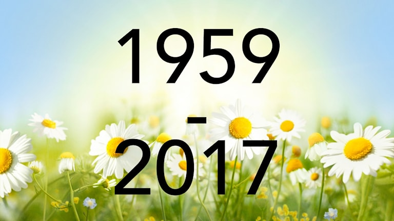 Årtalsbild till 2017