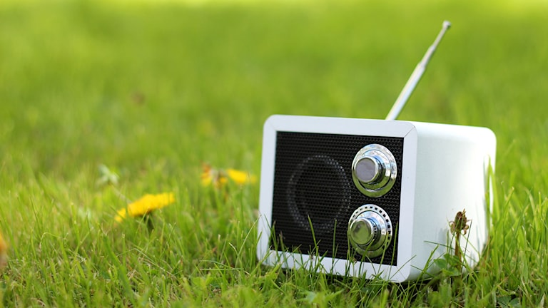 En radio i gräset. Foto: Jonna Spiik /Sveriges Radio