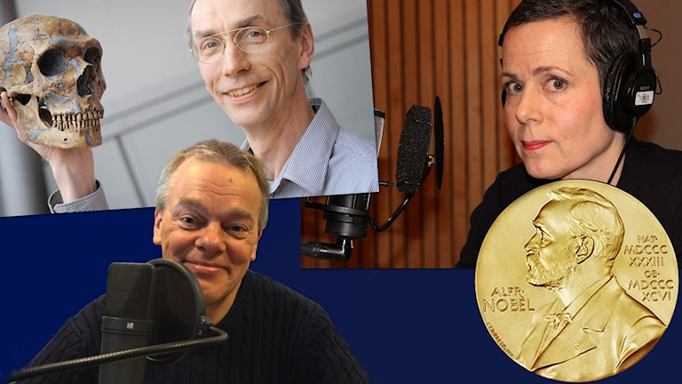 Nobeltema i Sommar: Svante Pääbo, Edvard Moser och Sara Danius.