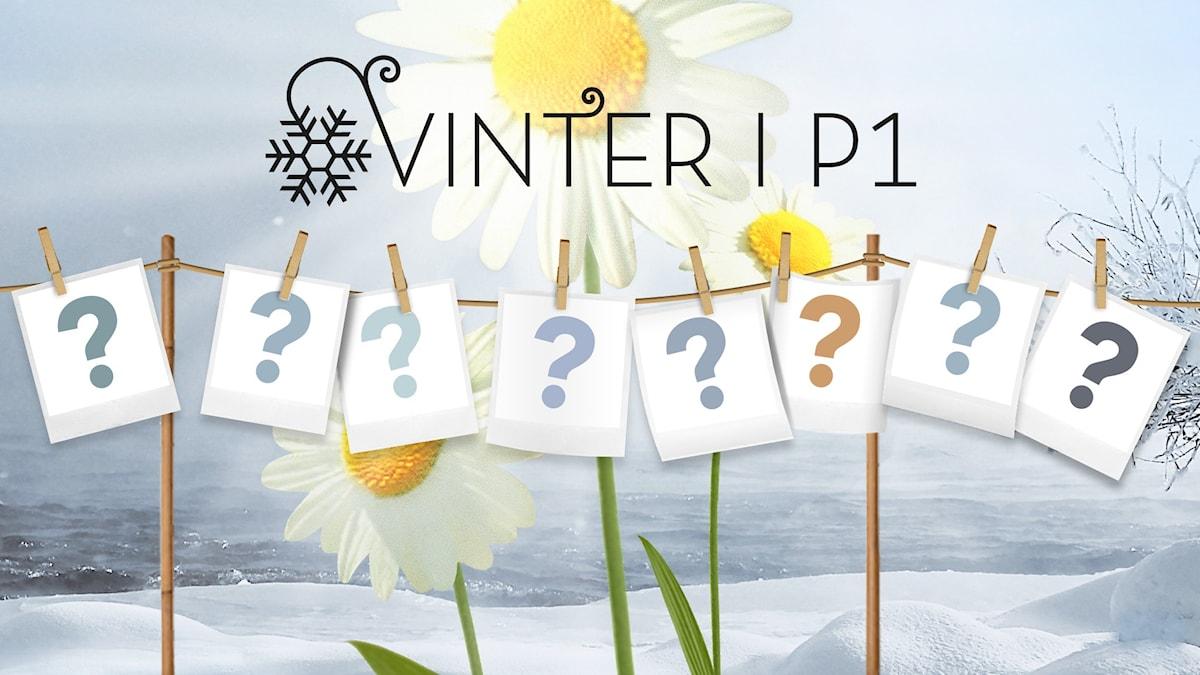 Vilka blir årets Vintervärdar? Bild: Sveriges Radio