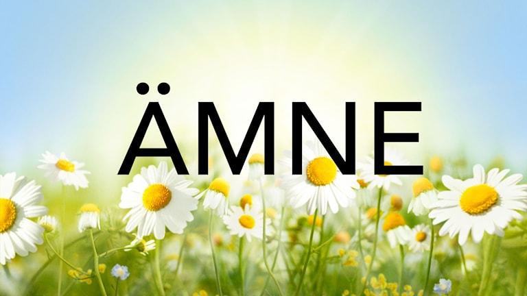 """En bild som säger """"ÄMNE"""" för att visa att sidan handlar om att Sommarvärdar är sorterade efter ämne."""
