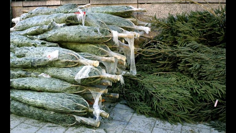 Шведские рождественские ёлки