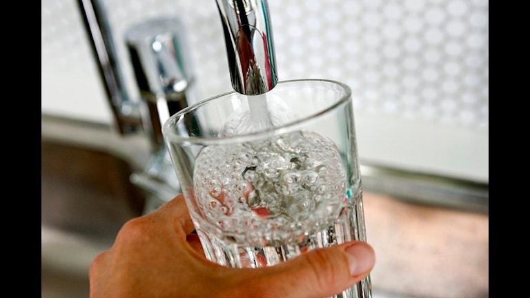 Тяжелые металлы в питьевой воде Швеции