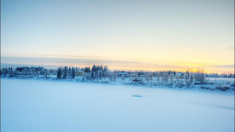 Шведский север привлекает