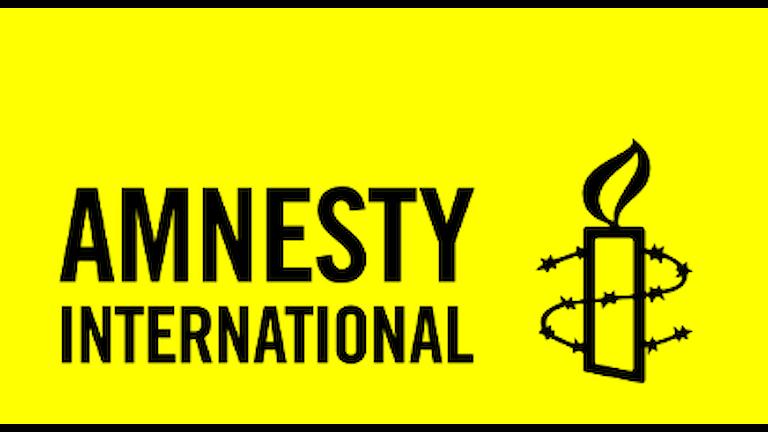 Международная Амнистия о нарушениях прав человека в Украине