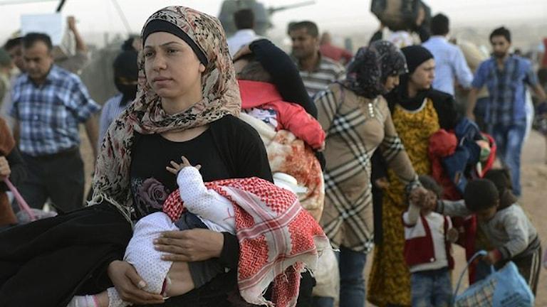 В Швецию прибудет 100 тысяч беженцев