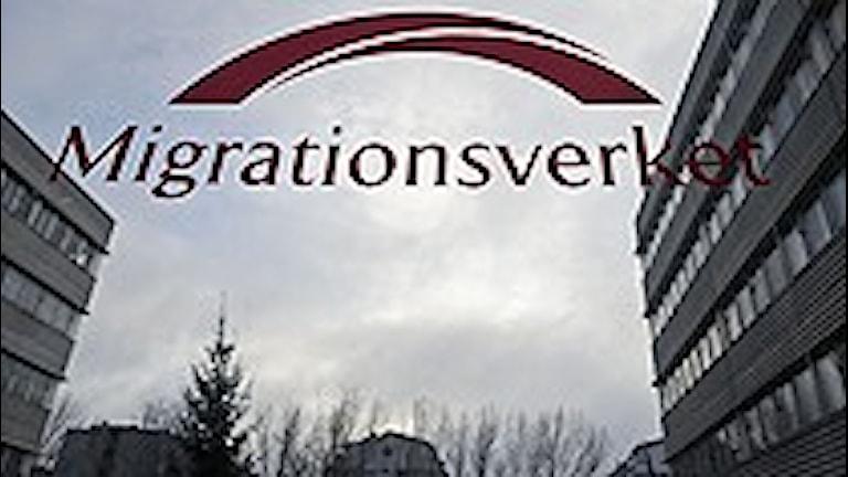 Миграционное ведомство Швеции набирает людей