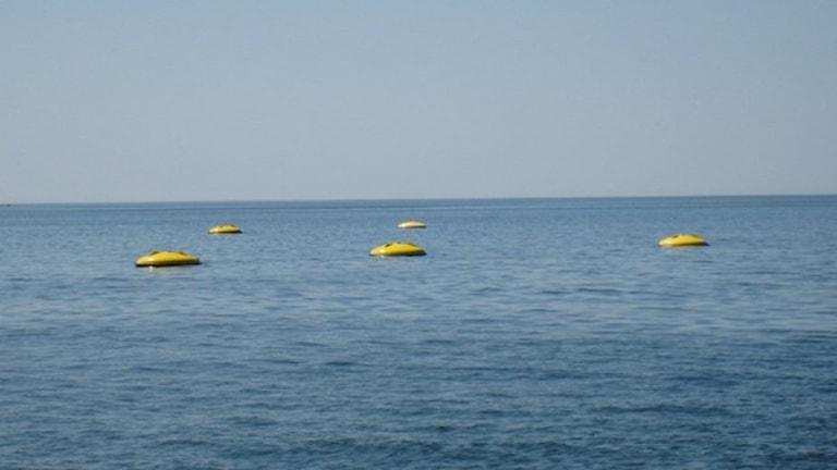 Так выглядят волновые электростанции в море. Фото:Seabased