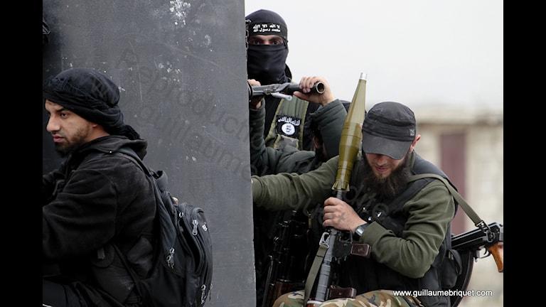 Террористы из ИГ в Сирии. Фото: Guillaume Briquet/Flickr