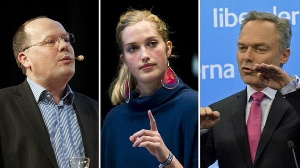 """Шведские либералы хотят """"потолка"""" в приеме беженцев"""