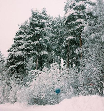 Снежная шведская зима: фото слушательницы Радио Швеция