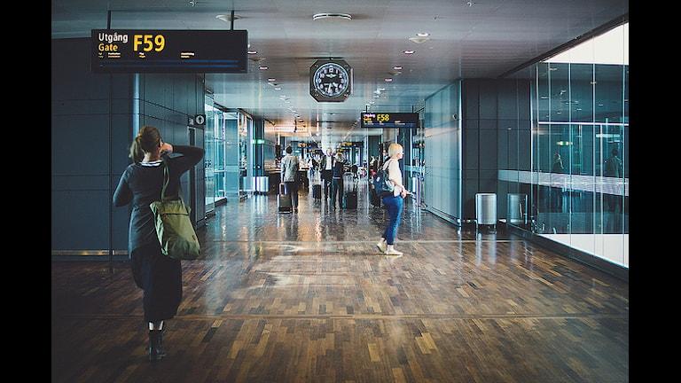 Шведы не выполняют требования паспортного контроля