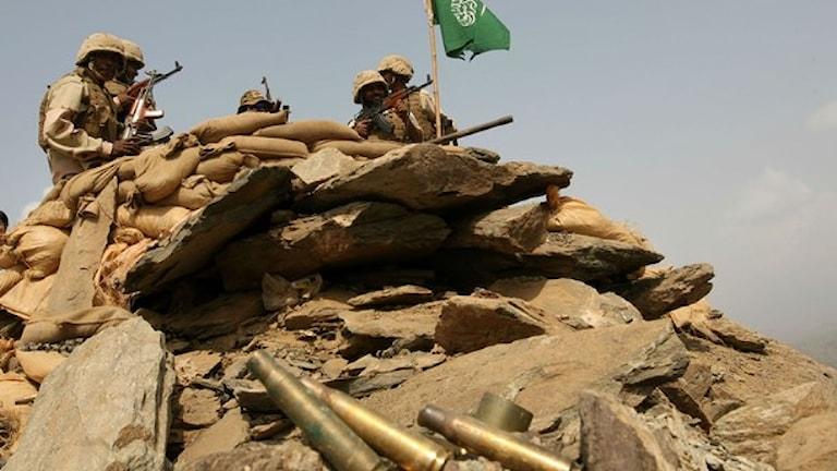 Дебаты о военном договоре Швеции с Саудовской Аравией
