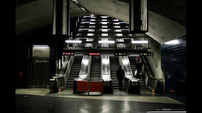 "Метро ""Университет"". Фото:  Vaidotas Urbanavicius/flickr.com"