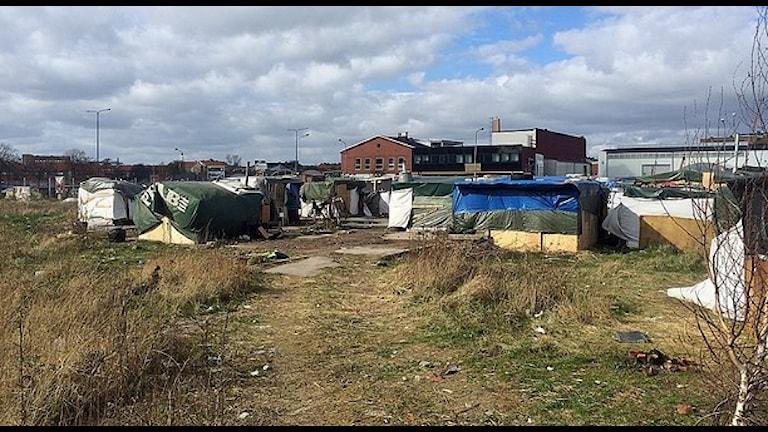 Стрельба у лагеря евромигрантов в Мальме