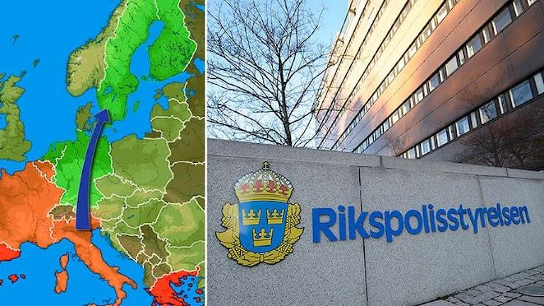 Контрабандисты везут, полиция задерживает... Фото: SVT
