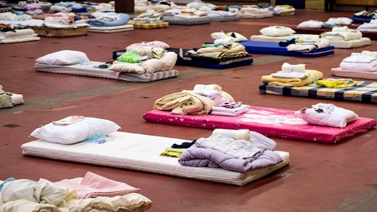Sleeping accommodation for asylum-seekers in Sundbyberg, outside Stockholm, Photo: Pontus Lundahl/TT.