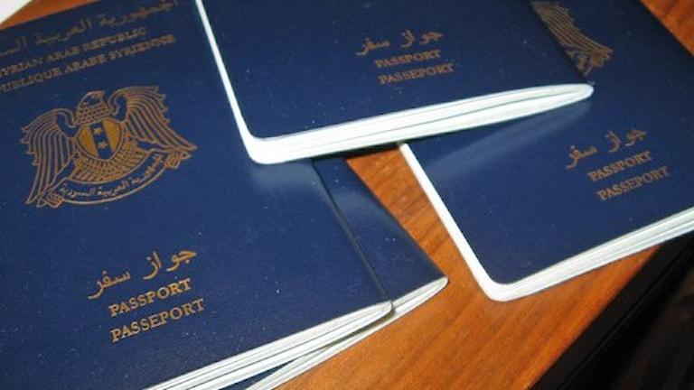 """Сирийские паспорта - много """"подлинных"""" фальшивок. Фото: Linnea Johansson/P4 Gävleborg."""