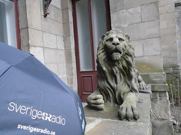 Зонтик Радио Швеции у льва во Львове
