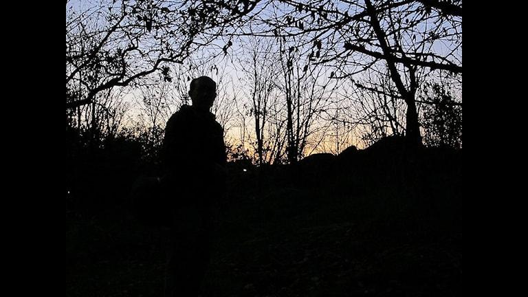Боязно. Фото: Laikki/flickr.com