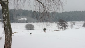 Викторина Радио Швеция: рекорд холода 2016