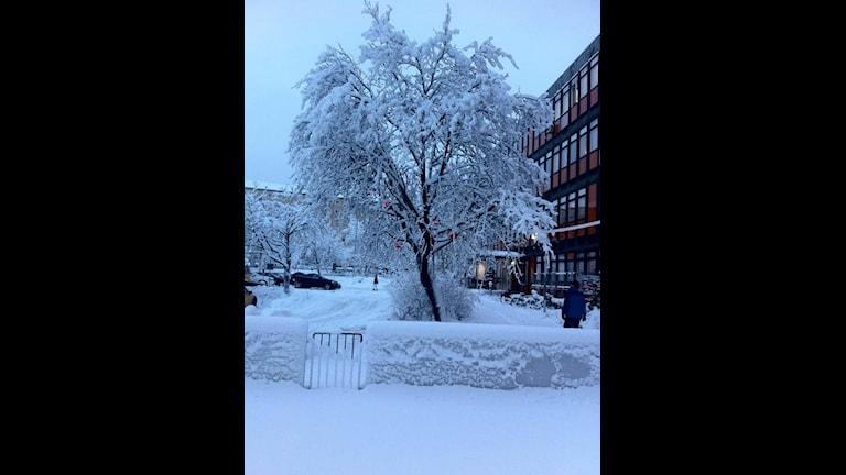 Снегопад в Гетеборге