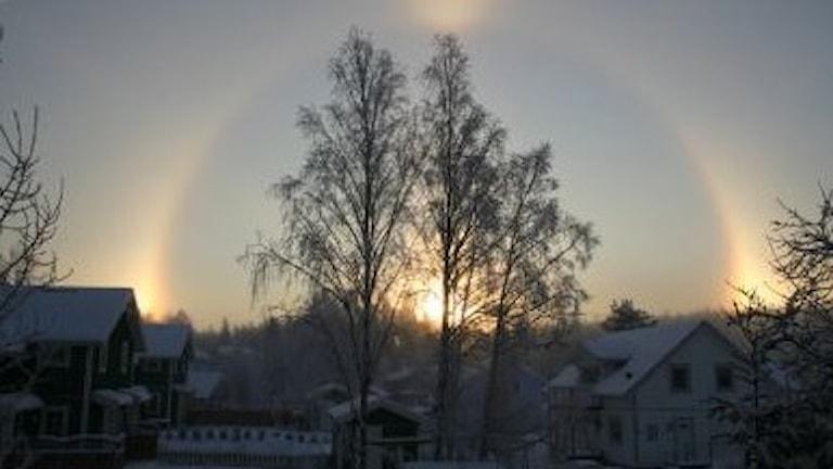 Гало эффект в пригороде Стокгольма Хюддинге. Фото: Nina Jern/SMHI