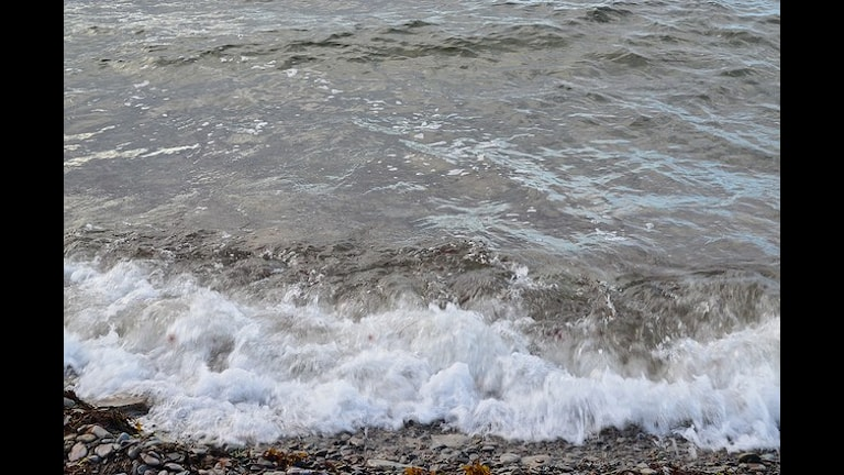 Стихает волна. Фото: Lille-Anne Dahlberg/flickr.com