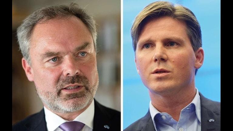 Шведские Либералы предлагают новую форму работы