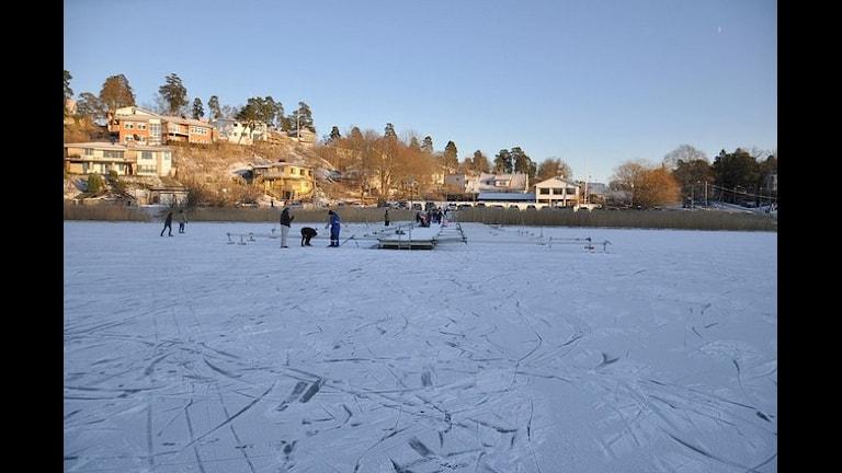 Зима в Дандерюде. Фото: Nikonfan312/flickr.com