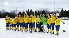 Сборная Швеции - чемпион мира по бенди