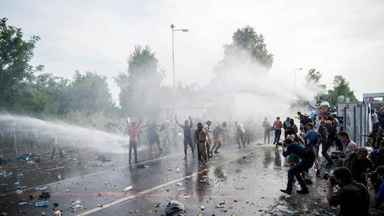 На венгерской границе. Из водометов по беженцам. Фото: Tamas Soki/TT