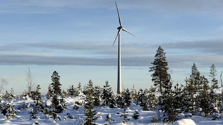 Ветряк в Норрботтене. Фото: Pontus Lundahl/TT