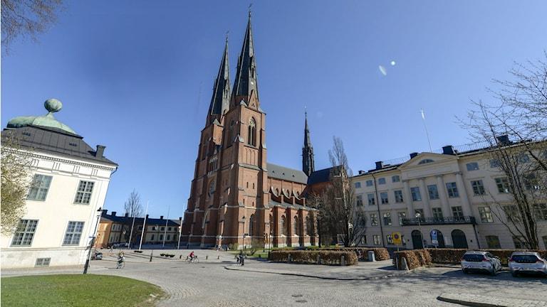 Домский собор Шведской церкви в Упсале. Фото: Bertil Ericson/TT