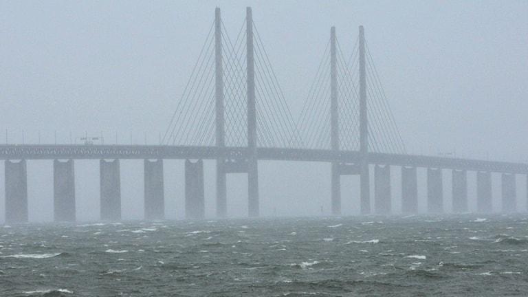 Öresundbrücke (Foto: TT)