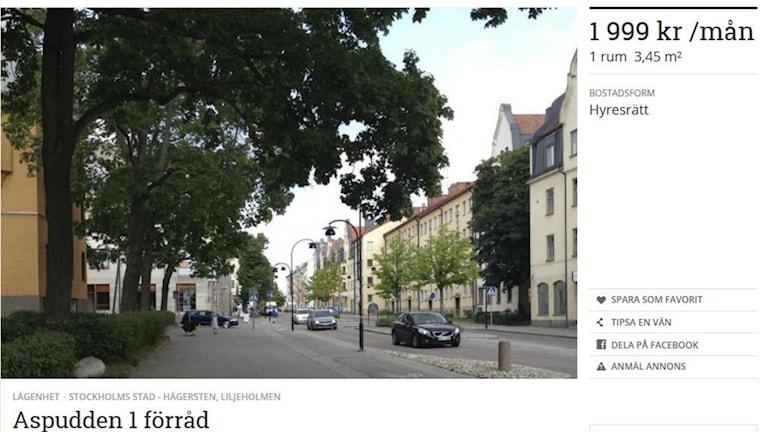 Bildschirmfoto der Wohnungsannonce am 31. 7. 2014