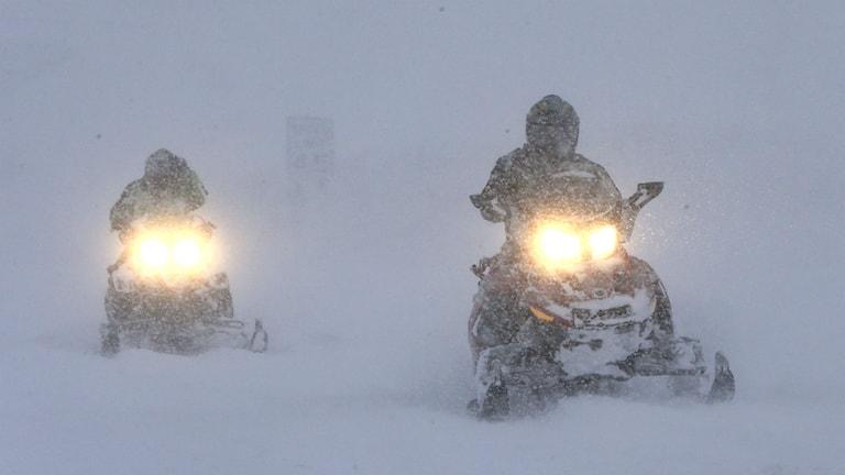 Schneemobil Schweden Winter Schnee