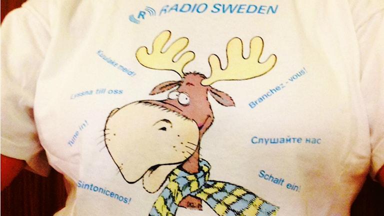 Radio Schwedens Maskottchen, Elch Gustafsson, gab es auch in einer besonders kuscheligen Winterausgabe. Der süsse Elch wurde dabei von einem blau-gelben Schal gewärmt. (Foto: Sybille Neveling / Radio Schweden)