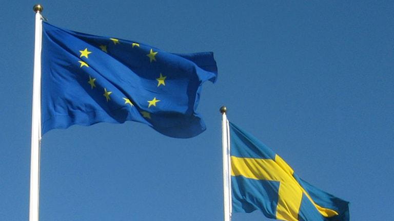 Vor 20 Jahren trat Schweden der EU bei (Foto: SVT Bild)