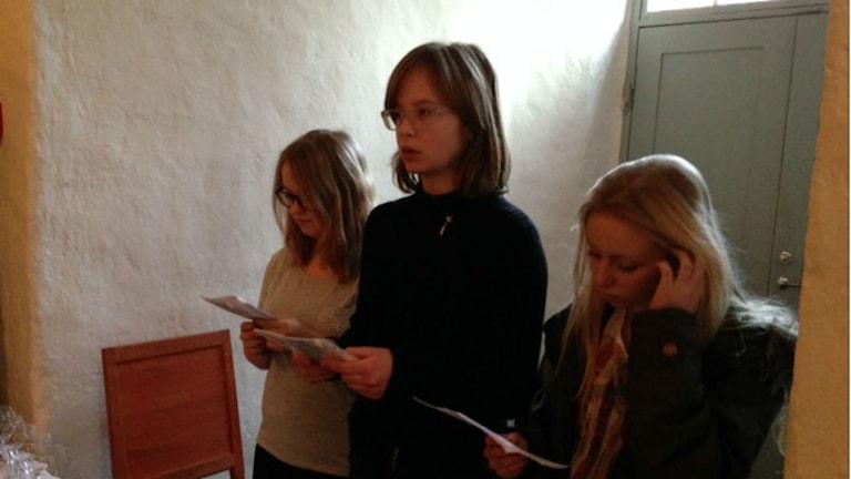 Tucholskys Gedichte und Texte gefallen noch heute -auch in Schweden (Foto: Liv Heidbüchel/Radio Schweden)